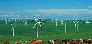 内蒙古大唐国际观后旗红牧风电场一期工程
